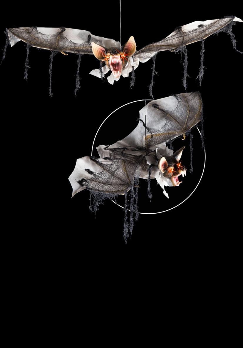 pipistrello animato