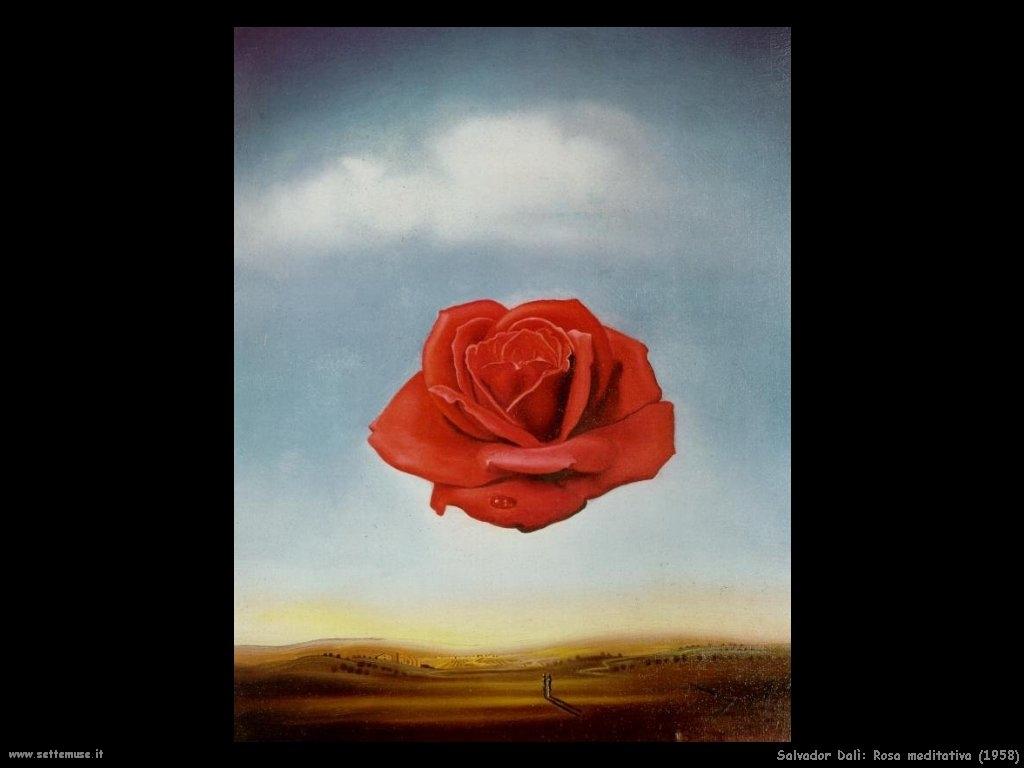 Rosa meditativa Salvador Dalì